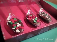 Chocolate Spoon Assortment 2